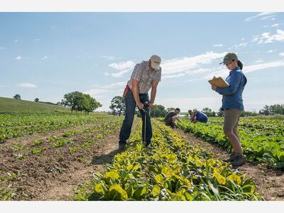 State Invest 7.5 Million To Save 29 Local Farms